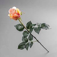 Роза Премиум, Н 77 см, силикон, Искусственный цветок, Днепропетровск, фото 1