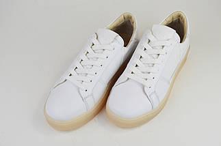 Кроссовки на арома подошве Alpino 628 Белые кожа, фото 3