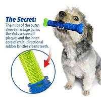 Игрушка для чистки зубов у собак Сhewbrush, Зубная щетка для собак, Самоочищающаяся зубная щетка собачья, Массажная щетка для десен собаки