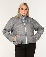 Осенняя короткая женская модная куртка без капюшона серого цвета (размеры: 42,44,46,48,50)
