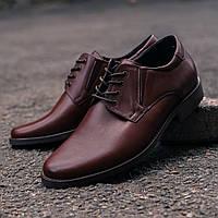 Коричневые кожаные туфли Pan 307