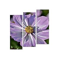 """Модульна картина на полотні """"Чайна троянда"""" 790х810мм, фото 1"""