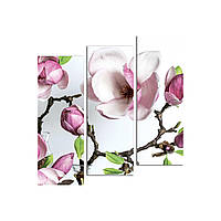 """Модульная картина на холсте """"Орхидея"""" 790х810мм, фото 1"""