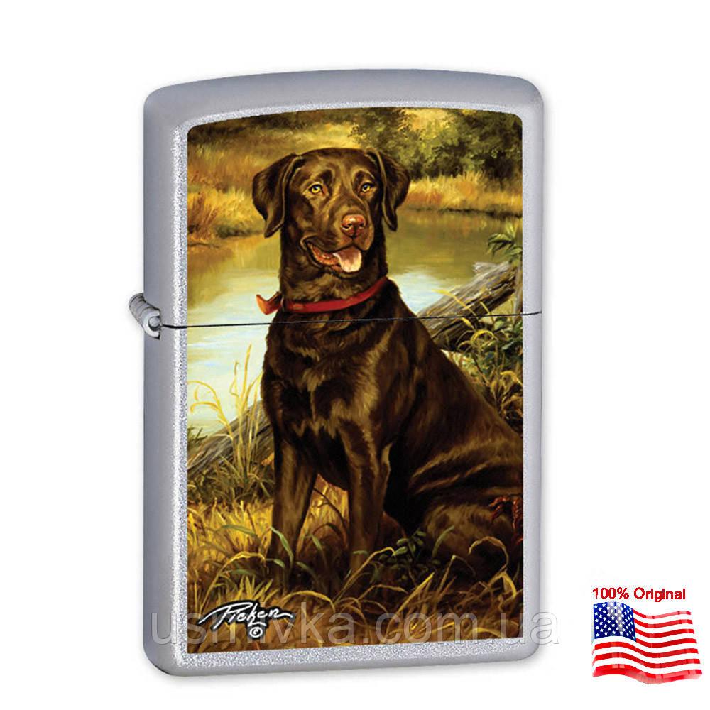 Зажигалка Zippo 24781 Labrador серая 24781