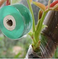 🎯 Лента прививочная Grafting Tape  для прививки и окулировки 100 метров, фото 1