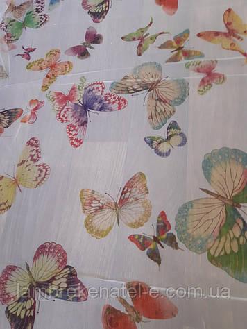 Тюль в кухню, в зал, в детскую, рисунок цветные бабочки на шифоне
