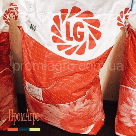 Семена подсолнечника Limagrain LG 59580 под Гранстар посевной гибрид подсолнуха Лимагрейн ЛГ 50580, фото 2