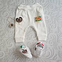 Ползунки, штанишки для новорожденных Gucci, фото 1