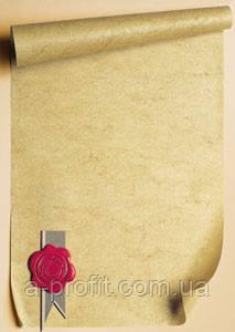 Галерея бумаги, Диплом 170 гр, уп/25 Pieczec