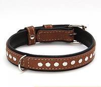 Нашийник для собак COLLAR SOFT з металевими прикрасами коричневий верх 7197, ширина 20мм, довжина 30-39див