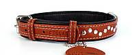 Нашийник для собак COLLAR SOFT з металевими прикрасами, ширина 25мм, довжина 38-49см, 7207 коричневий верх