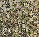 Сетка маскировочная двухсторонняя Мультикам - Camonet + Камуфляж 3м*6м, CE, фото 2