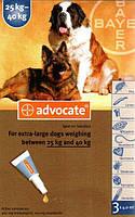 Капли Advocate Адвокат от глистов, блох, клещей для собак весом от 25 кг, 3х4 мл 134.0413