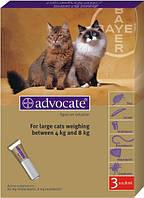Капли Bayer Advocate Адвокат инсектицидные для кошек весом 4-8 кг, 3х0.8 мл