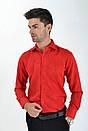 Рубашка sw 10-2 размер 41, фото 3