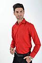 Рубашка sw 10-2 размер 41, фото 5