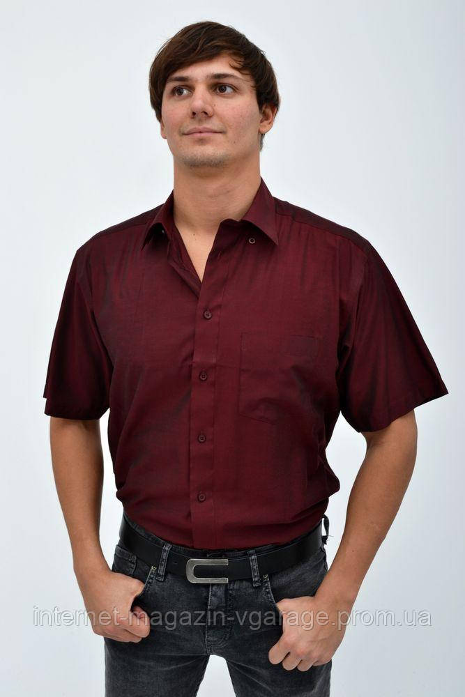 Рубашка 818-38 цвет Марсала