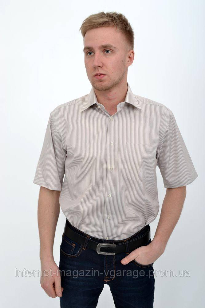 Рубашка 732-6 цвет Бежевый