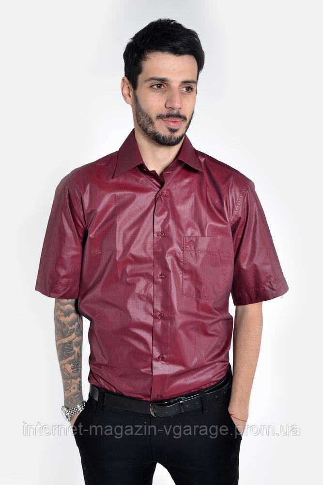 Рубашка 50P038 цвет Вишневый