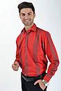 Рубашка 4387-6 размер 42, фото 3