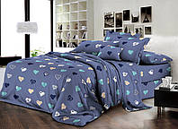 Двуспальный комплект постельного белья евро 200*220 хлопок  (13984) TM KRISPOL Украина