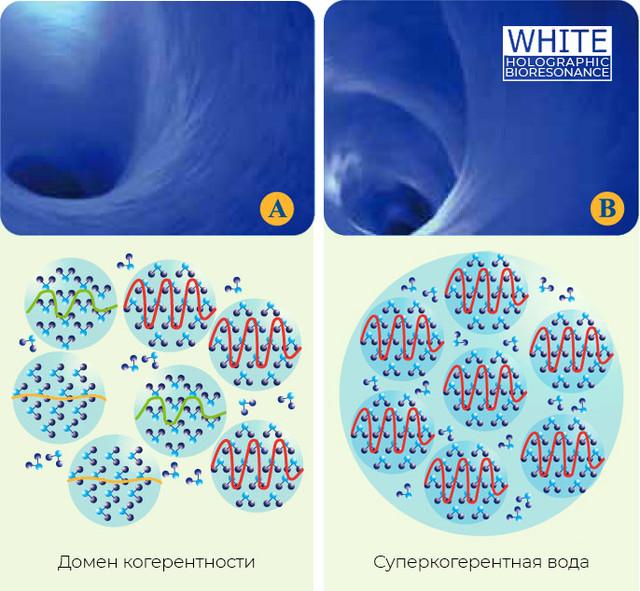 Обзор суперкогерентной воды