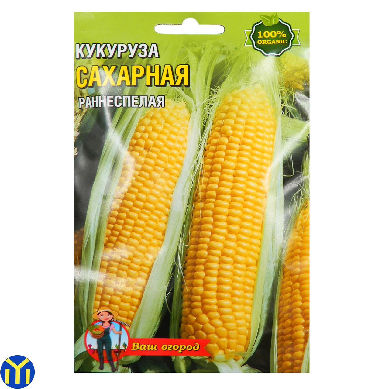 Зерна кукуруза Сахарная, Раннеспелая