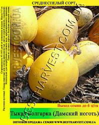 Семена тыквы Болгарка (Дамский Ноготь) 10 кг (мешок)