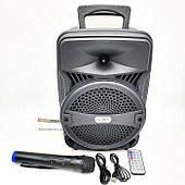 Акустическая система колонка Ailiang LiGE-A88-K Беспроводной микрофон Мощность 15 Ватт
