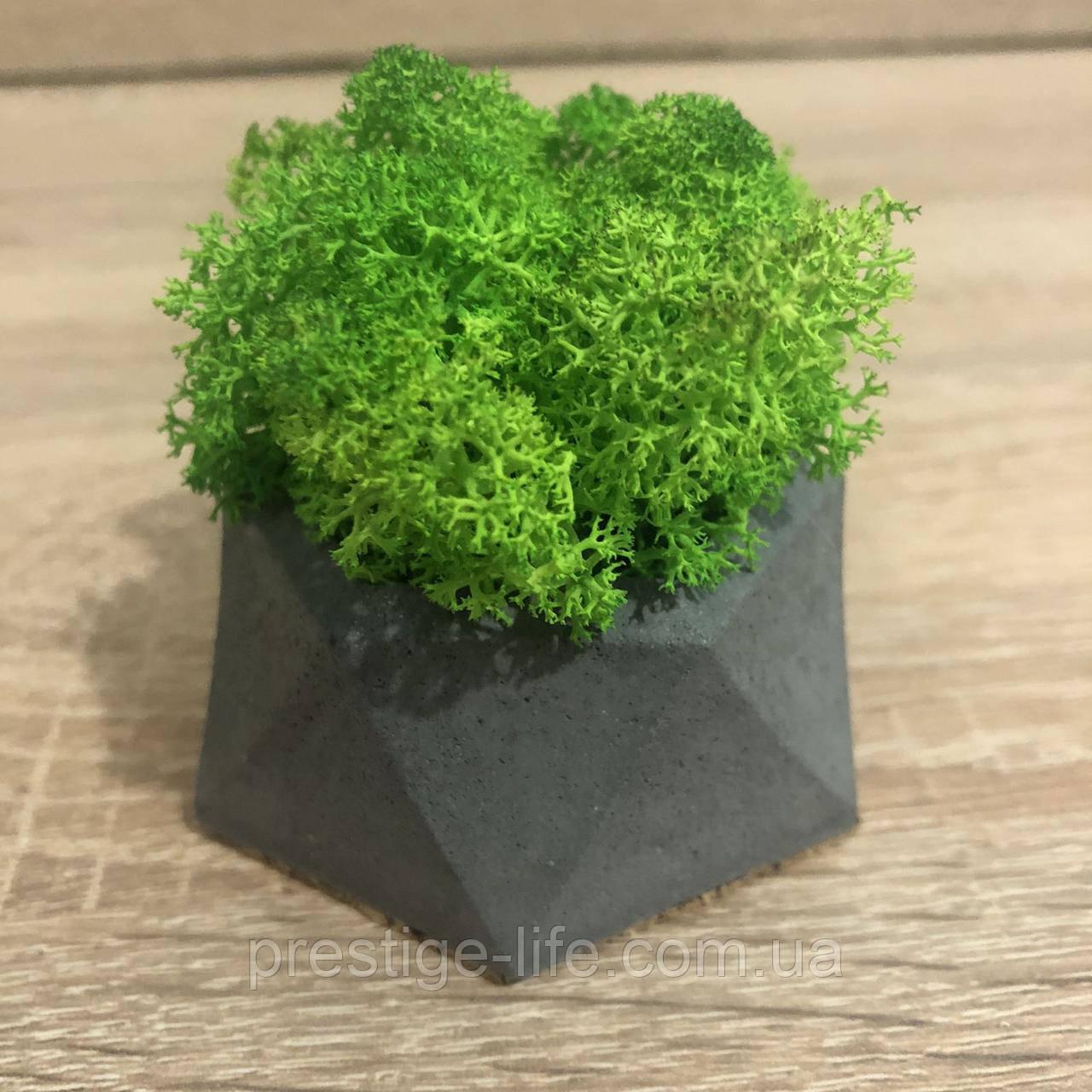 Кашпо зі стабілізованим мохом M@M Еко Декор Сірий. (011mm g)