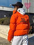 Женская короткая куртка с надписью на спине и воротником стойкой vN6856, фото 3