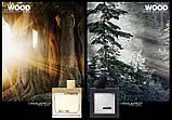 Dsquared2 He Wood Silver Wind Wood 100ml edt (уверенный, мужественный, соблазнительный), фото 8