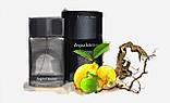 Мужской парфюм Zegna Intenso Ermenegildo Zegna 100ml edt (яркий, чувственный, мужественный, стильный), фото 10