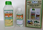 Люмінофор зелений 10 грам!, фото 10