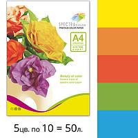Набор цветной бумаги А4 Spectra Color 80 г/м2 50 л Аляска 5 интенсивных цветов