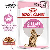 Royal Canin (Роял Канин) Kitten Sterrilised в соусе консервированный корм для котят от 6 до 12 месяцев,12шт