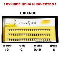 Ресницы Nesura Eyelash 10D, 6 мм, изгиб С, 0,10, 60 пучков Несура пучкові вії, війки