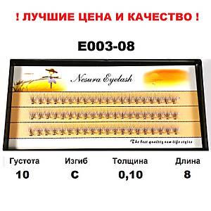 Ресницы Nesura Eyelash 10D, 8 мм, изгиб С, 0,10, 60 пучков Несура ресницы пучковые