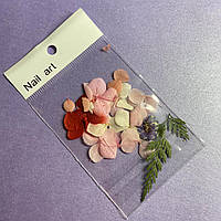 Декор Сухоцветы для для дизайна ногтей