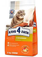 Сухой корм Club 4 Paws Premium для взрослых котов Rabbit (Клуб 4 Лапы Премиум Кролик) 2кг