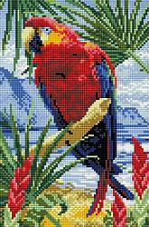"""Набір алмазної мозаїки """"Папуга"""" (20 х 30)"""