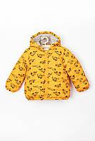 Куртка для хлопчика 62 см, куртка для хлопчика демісезон, 5.10.15, жовта