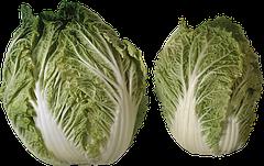 Семена салата весовые