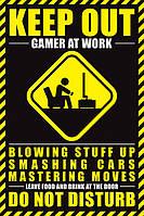 """Постер """"Gamer At Work"""""""