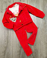 Детский теплый велюровый спортивный костюм для девочки размер 98 на 3 года Турция