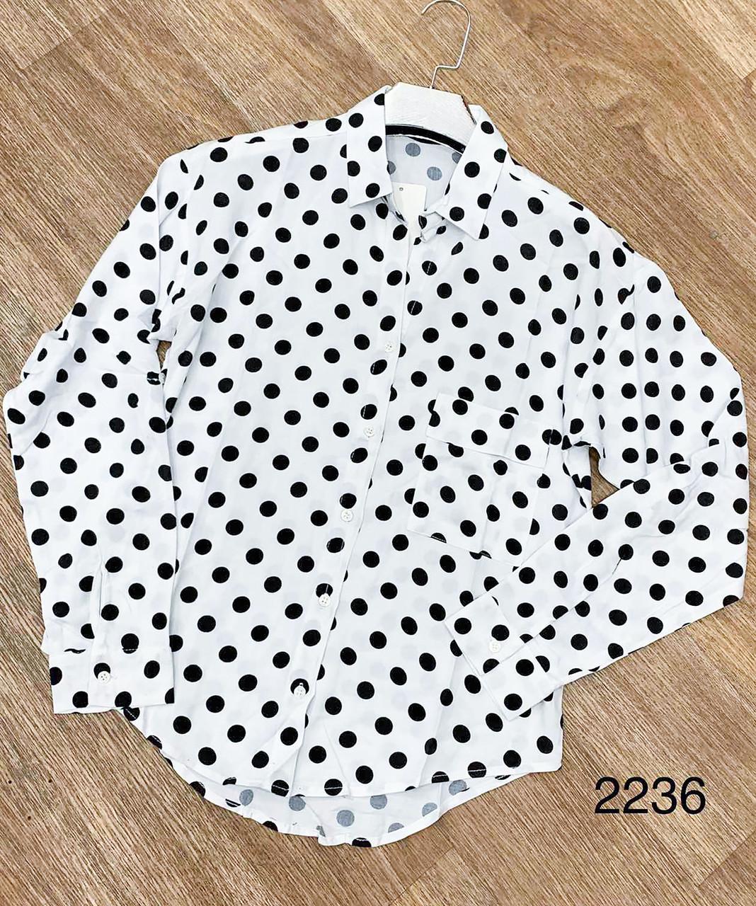 Класична сорочка в горошок 44-50 (в кольорах)