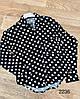 Класична сорочка в горошок 44-50 (в кольорах), фото 2