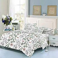 Семейное постельное белье ТЕП 326 Nature 2 пододеяльника