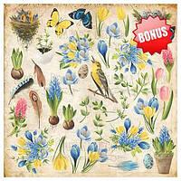 Набор скрапбумаги Botany Spring 20x20 см, 10 листов