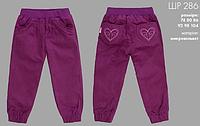 Штаны для девочки микровельвет
